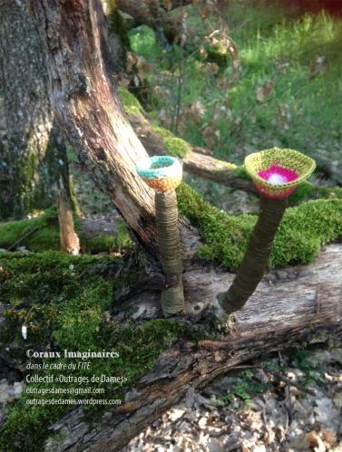 corolles au bois genevieve
