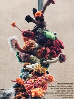 extrait-coraux-extravagants-copie